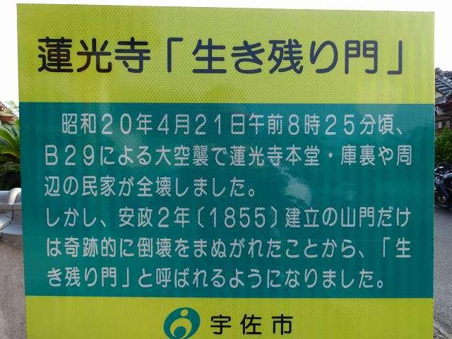 DSC02289.jpg